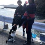 講習 猫 ダイビング ダイブマスター インストラクター 仙台の海