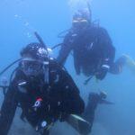海中写真 オープンウォーターオープンウォーター 講習 女川 ダイビング
